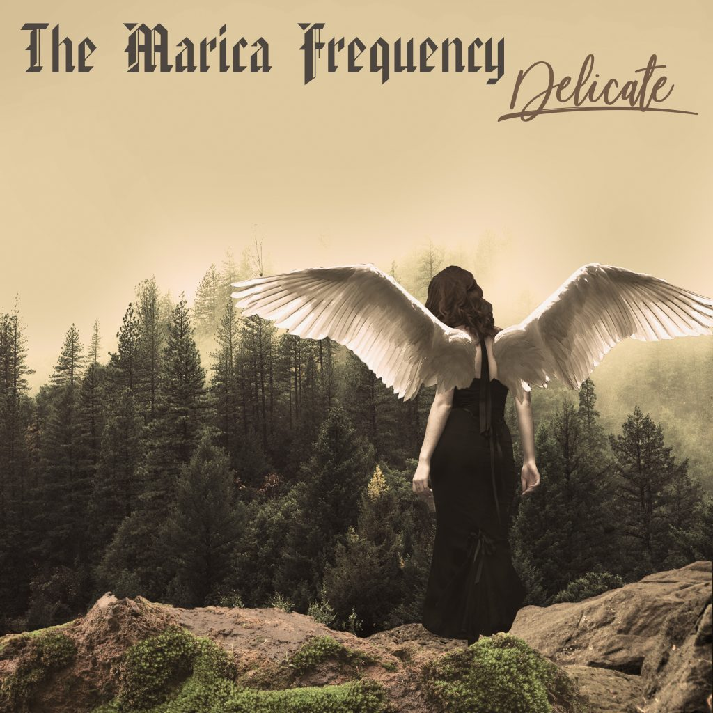 "The Marica Frequency // ""Delicate"" - album artwork"
