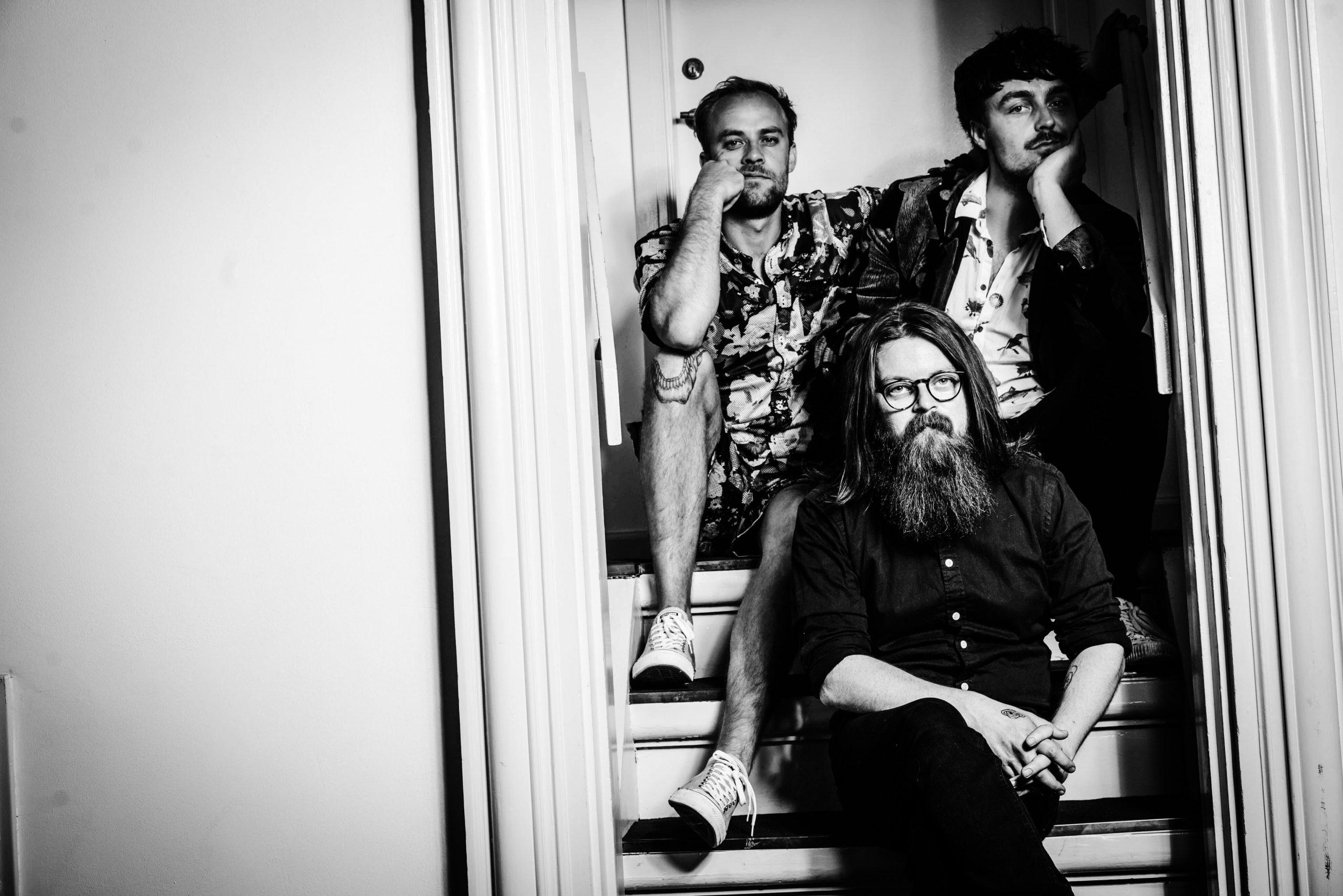 The Great Dictators - band members
