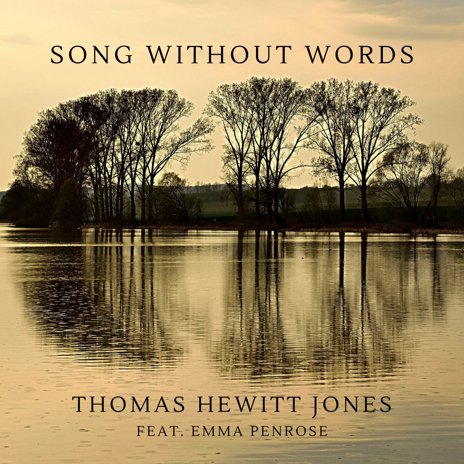 Thomas Hewitt Jones // Song Without Words - single cover