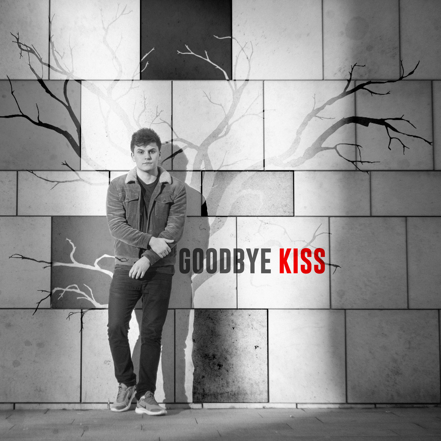 Ian Holmes // Goodbye Kiss - single cover