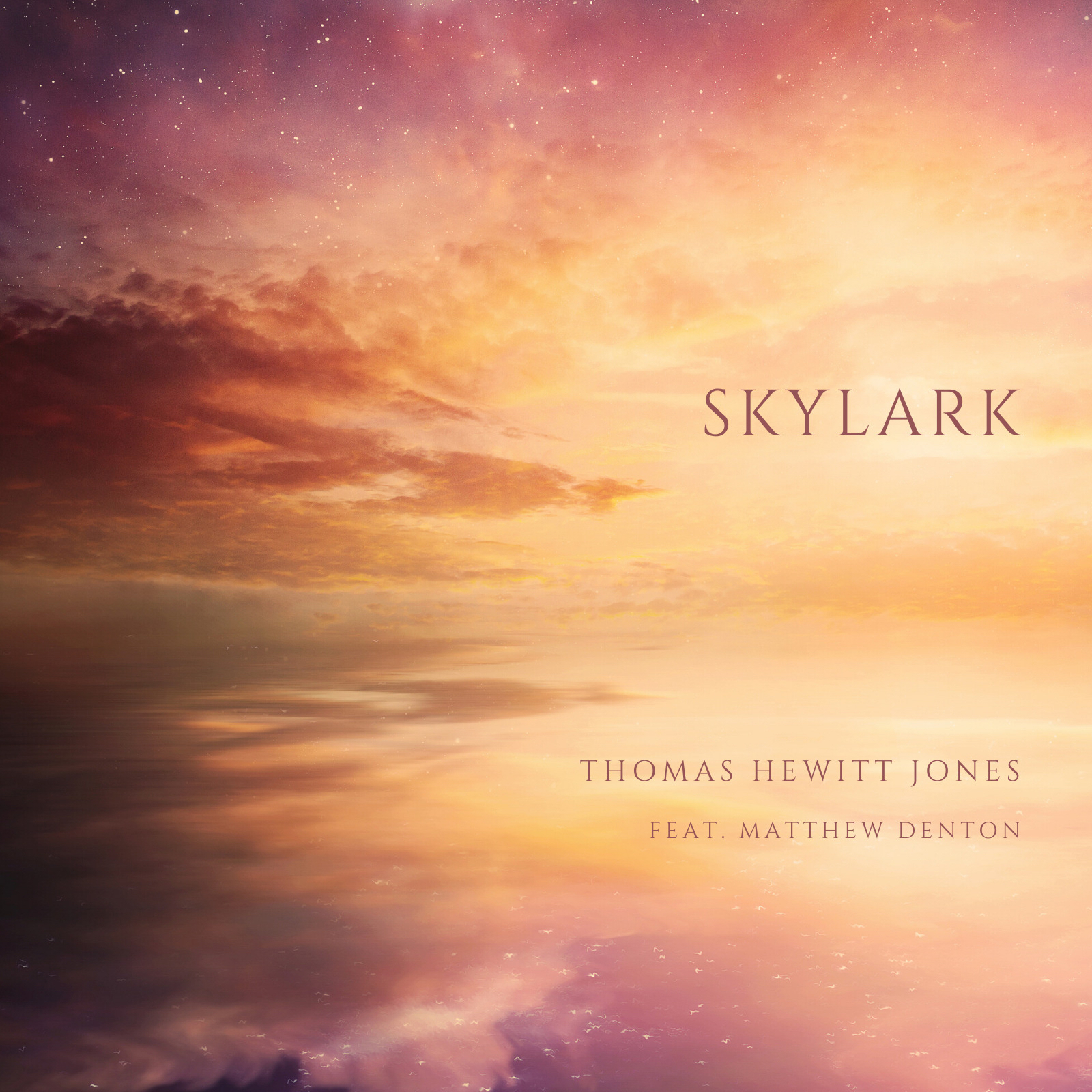 Thomas Hewitt Jones // Skylark - single cover
