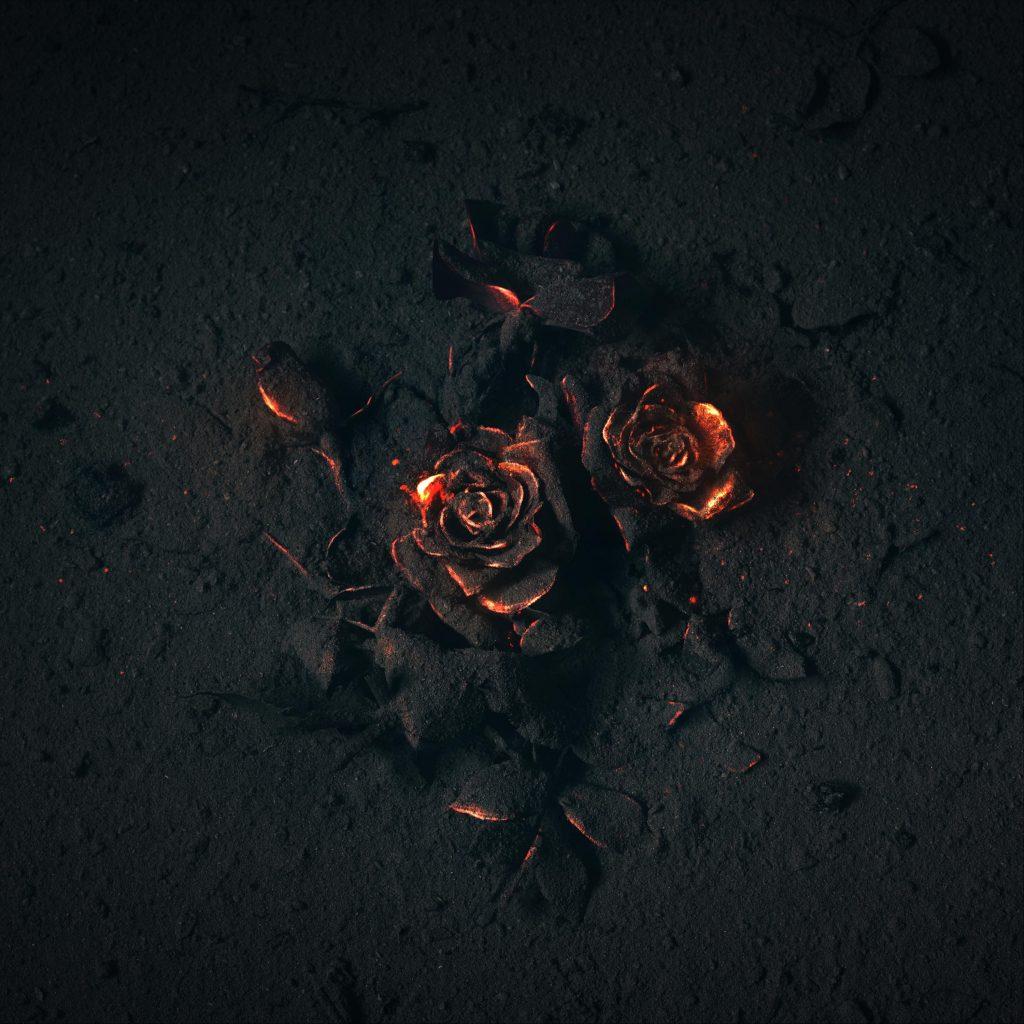 Tadini // The Arsonist - single cover