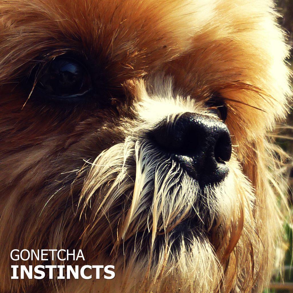 Gonetcha // Instincts - album cover