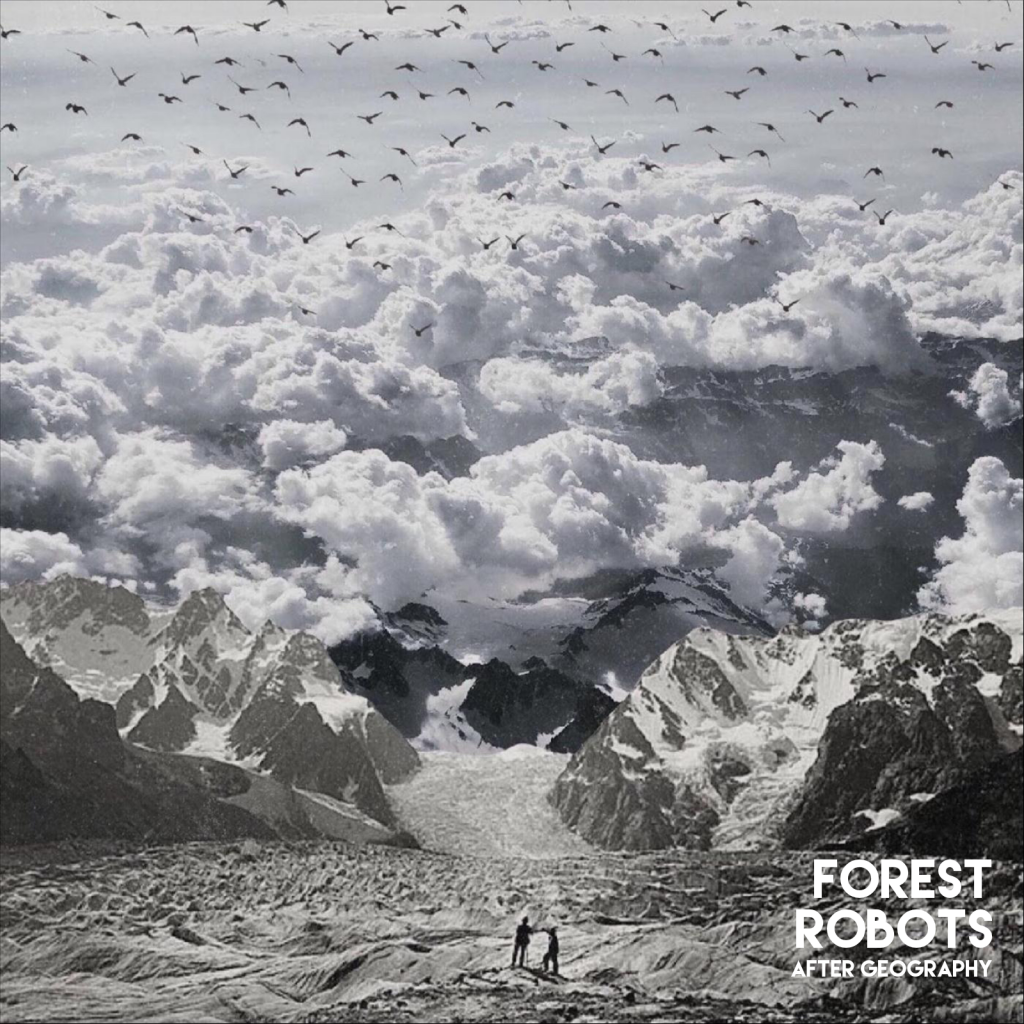 Forest Robots // After Geography - album cover