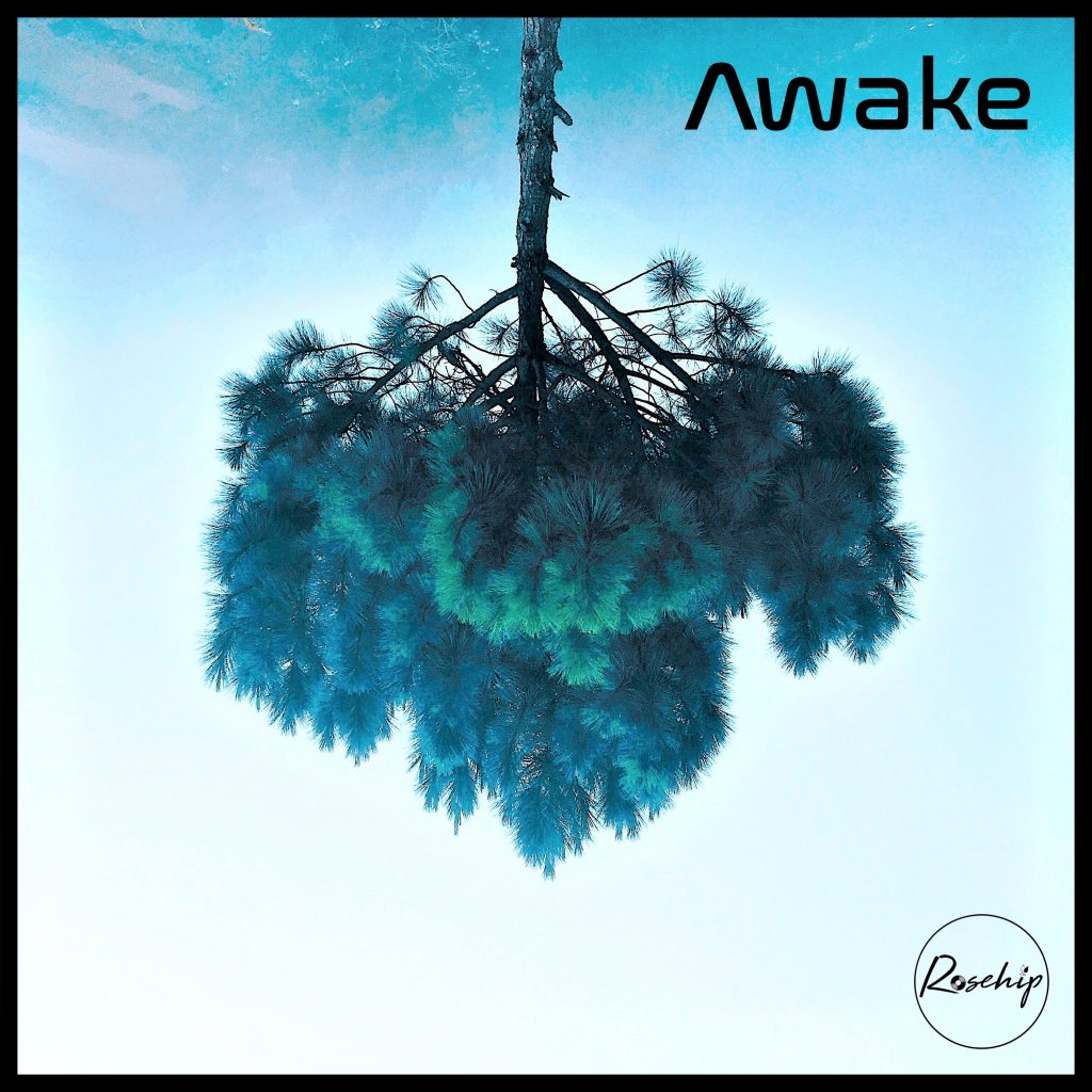 Rosehip // Awake - single cover