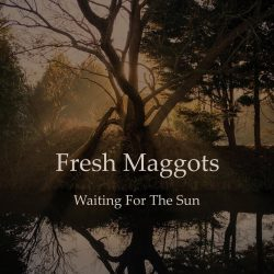 Fresh Maggots - Waiting For The Sun - album artwork cover