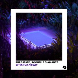 Pure State, Richelle Diamante  - What Can I Say - single cover artwork